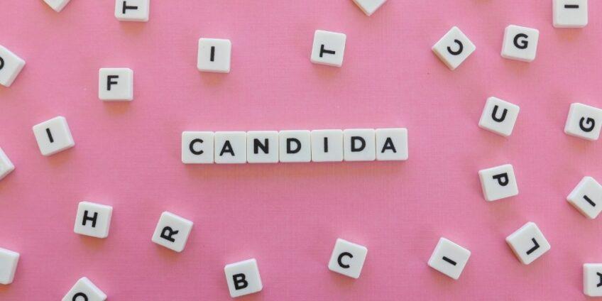 Candida blog image